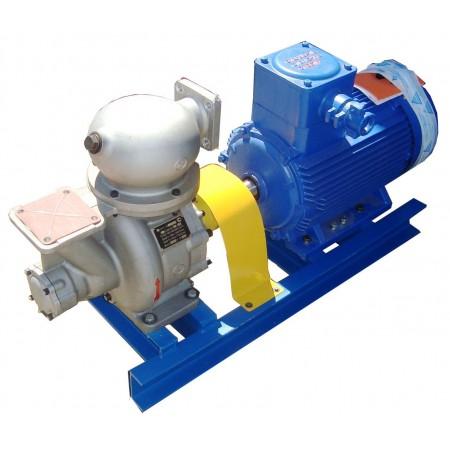 Насосный агрегат АСЦЛ 20/24 с эл.дв. 22 кВт/1500об для топлива